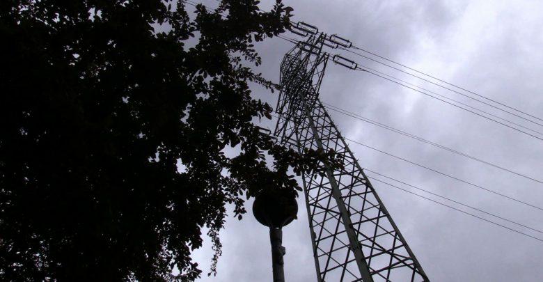 Wycinka drzew na Placu Grunwaldzkim w Katowicach odwołana! Tauron Dystrybucja wycofał wniosek o wycinkę drzew, które rosną pod linią wysokiego napięcia w katowickiej dzielnicy Koszutka