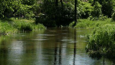 Są zarzuty dla 17-letniej matki noworodka znalezionego w rzece we wsi Grabiec w gminie Szczekociny