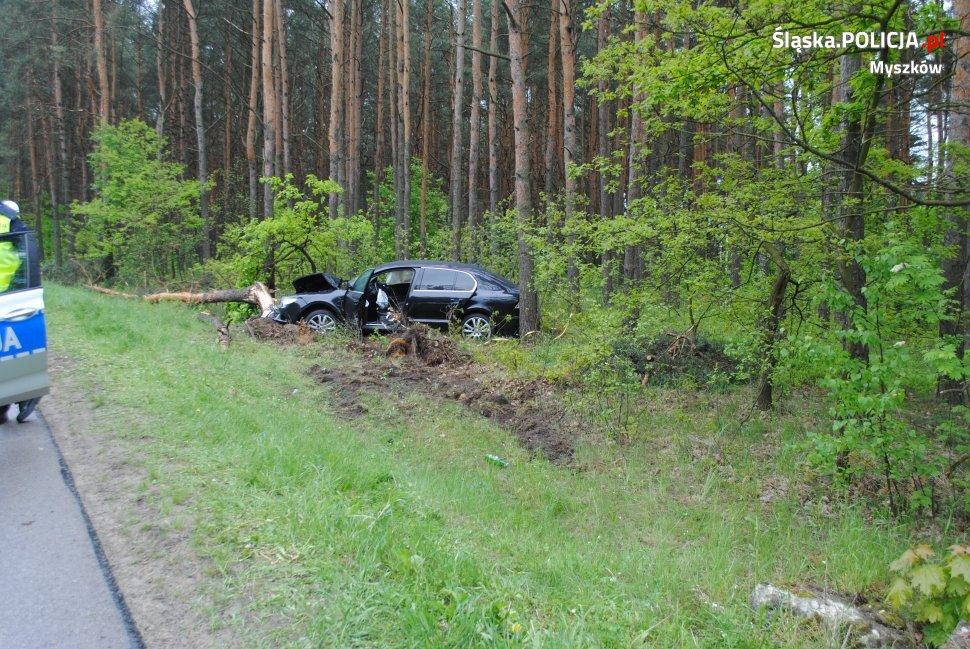 Groźny wypadek w Poraju! Samochód uderzył w drzewo, a kierowcy brak [ZDJĘCIA]