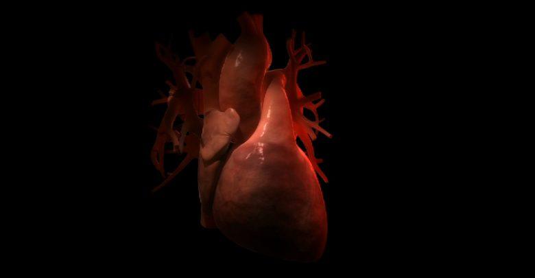Wady zastawkowe serca mogą dawać objawy, takie jak duszność czy omdlenia, albo nie dawać ich wcale