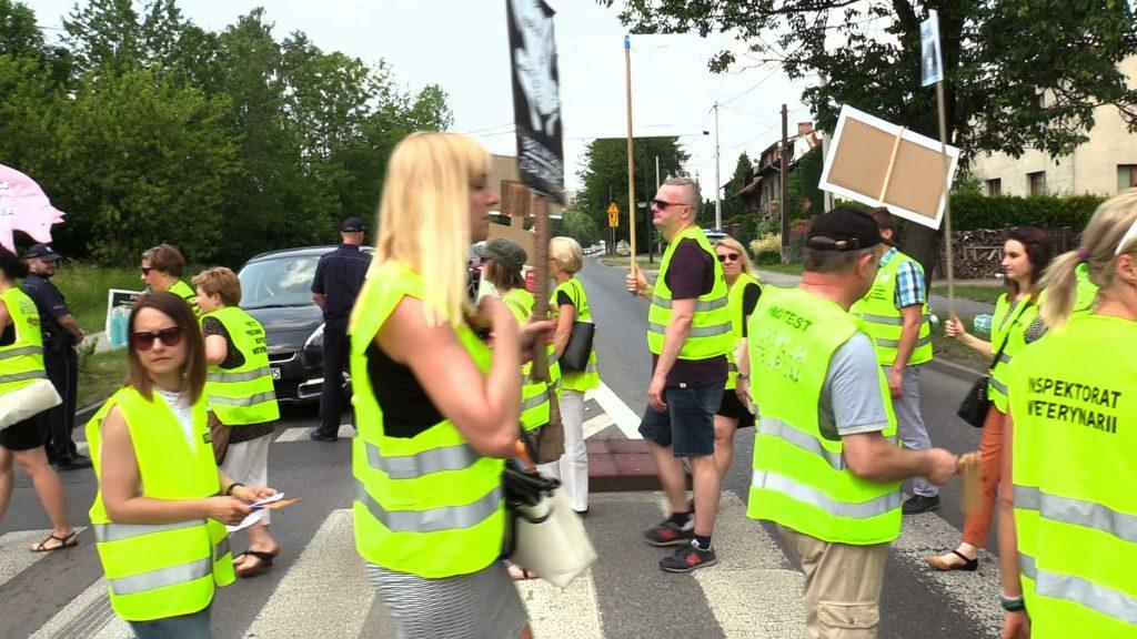 Pracownicy Inspektoratu Weterynarii zablokowali ulice Katowic. W godzinach szczytu wyszli na drogę, bo walczą o lepsze warunki pracy