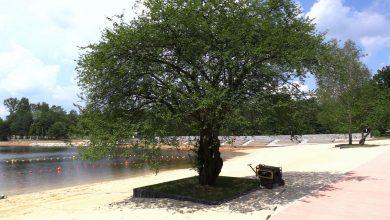 Kąpielisko w Rybniku-Kamieniu już gotowe! Powstała plaża i miejsce rekreacji [WIDEO]