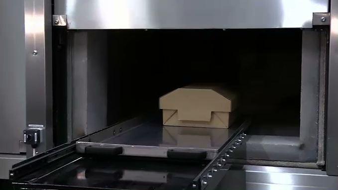 Kremacja dla zwierząt? W Rudzie Śląskiej otwarto specjalny ośrodek [WIDEO]