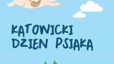 Bieg z psem, dogtrekking oraz wielki Psi Piknik, czyli IV Katowicki Dzień Psiaka (fot. IV Katowicki Dzień Psiaka/fb)