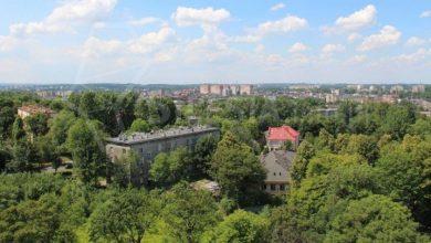 Chorzów: W mieście powstaną zielony dywan, ściana i podwórko (fot. mojchorzow.com.pl)