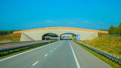 Planujesz Eurotrip? Sprawdź jakie prawo drogowe obowiązuje w Europie