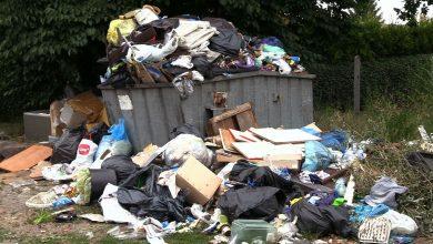 Ruda Śląska: Ogródki działkowe zalewa fala śmieci! To wina działkowców?