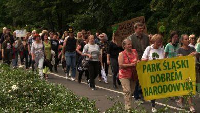 Nie chcą wycinki drzew. Milczący marsz w Parku Śląskim