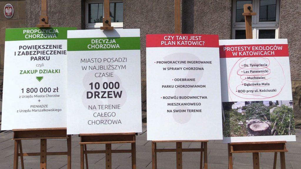 Wycinka drzew przy Parku Śląskim. Chorzów wymieni działki z inwestorem? Miasto: nie mamy zamiaru!
