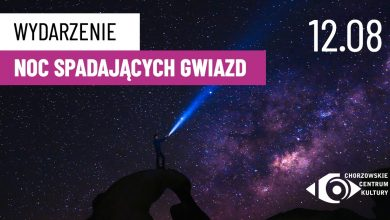 Spadające gwiazdy nad Parkiem Śląskim? Będzie można je wspólnie oglądać!