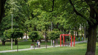 Katowice: Kompleksowa modernizacja parku Boguckiego zakończona (fot.UM Katowice)