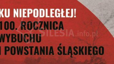 (fot. swiony.pl)