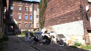 Mieszkańcy ulicy Powstańców walczą o podwórko ze szczurami. MZGK obiecuje odszczurzanie