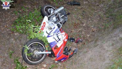 Zderzenie motocyklisty z łosiem. 21-latek zmarł w szpitalu (fot. Policja Lubelska)