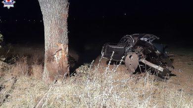 Wjechali w drzewo. 19 i 16-latek nie żyją (fot. Policja Lubelska)