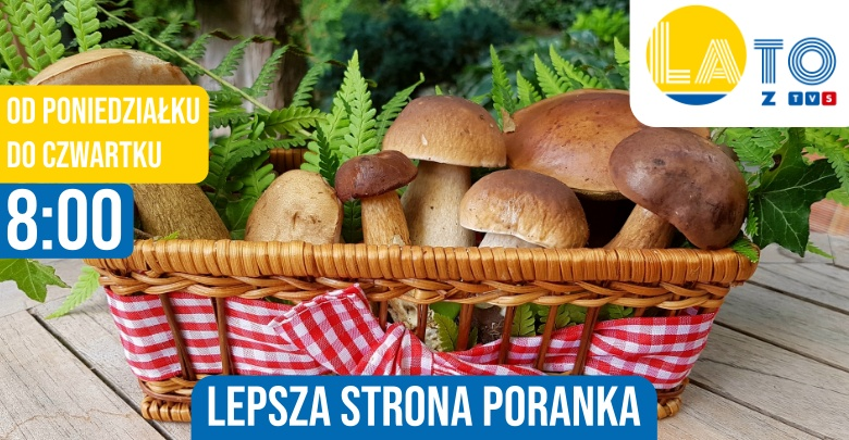 Sezon grzybowy (fot. pixabay.com)