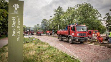 Modernizacja Parku Śląskiego. Ruszyły remonty alejek (fot.Park Śląski)