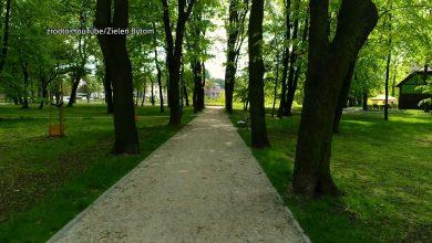 Bytomskie parki zyskały nowy blask. Za ponad 15 mln złotych przywrócono świetność zieleni w pięciu parkach i trzech zieleńcach