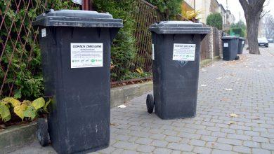 Od dziś wyższe stawki za śmieci w Dąbrowie Górniczej