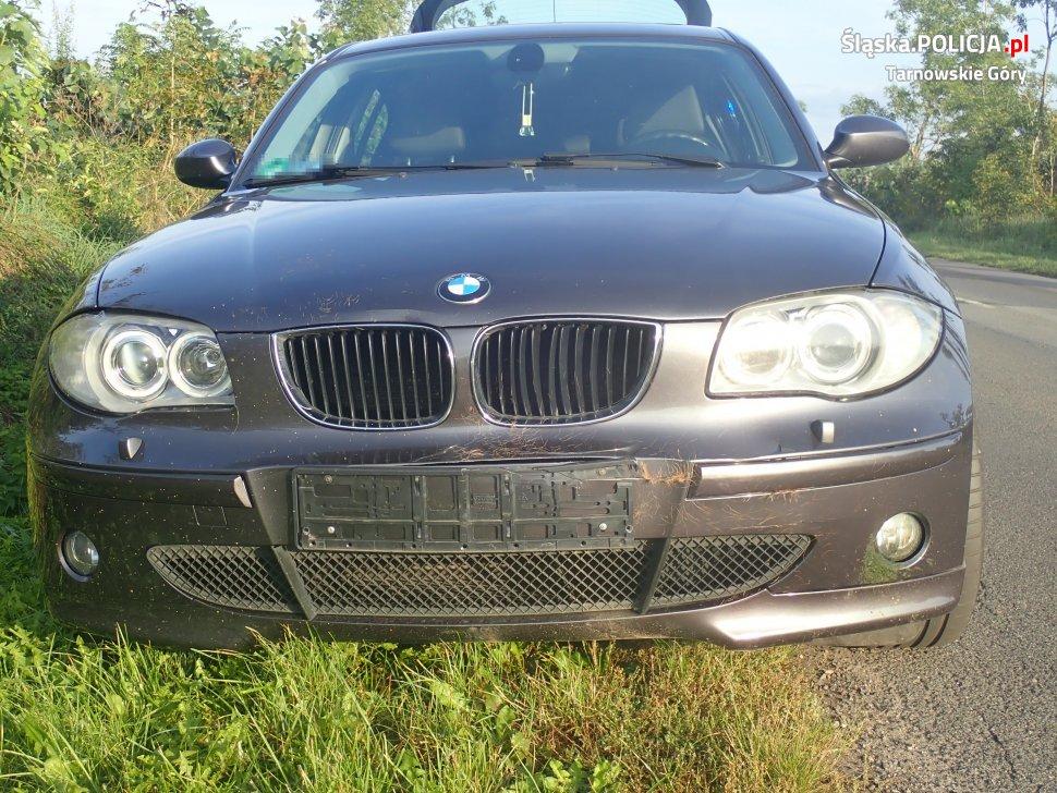 Radzionków: sarna wbiegła wprost pod samochód! UWAGA na dzikie zwierzęta