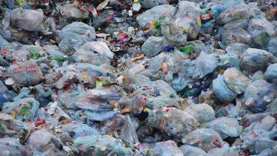 W Sosnowcu planowane są podwyżki opłat za śmieci. Nie tylko Sosnowiec podnosi ceny za śmieci, ale i niemal całe Zagłębie!(fot.poglądowe/www.pixabay.com)