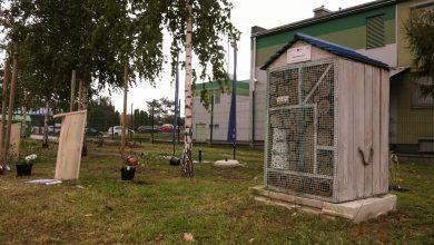 Święto drzewa w Katowicach: Akcja Klubu Gaja dodała skrzydeł najmłodszym [WIDEO]