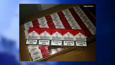 Katowice: Lewe papierosy za kilka milionów! Policjanci odkryli je na prywatnej posesji