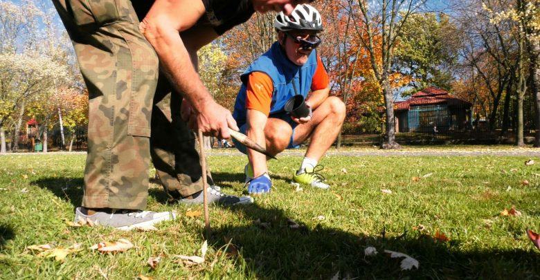 Do ziemi trafiło aż 10 tysięcy cebulek! Dziś w Parku Śląskim odbyła się Krokusowa Niedziela