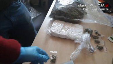 Starczyłoby dla niewielkiego miasta. Góra narkotyków skonfiskowana w Dąbrowie Górniczej (fot.KMP Dąbrowa Górnicza)