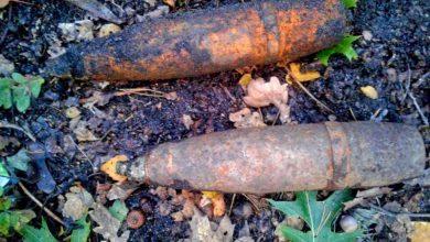 Gliwice: Niebezpieczne znalezisko podczas grzybobrania (fot.KMP Gliwice)