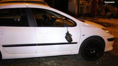 Mężczyzna został przyłapany na gorącym uczynku przez sosnowiecką policję. W dzielnicy Pogoń zdemolował 14 samochodów. Miał prawie dwa promile alkoholu.(źródło: KMP w Sosnowcu)