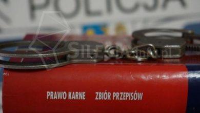 (fot. zory.com.pl)
