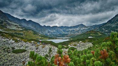 Nurkowała w Wielkim Stawie w Tatrach. Za szybko się wynurzyła. Interweniowali ratownicy TOPR (fot.poglądowe/www.pixabay.com)