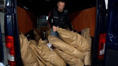 Policjanci spalili narkotyki. Z dymem poszło 77 kilogramów marihuany, amfetaminy i dopalaczy (fot. Policja Kujawsko-Pomorska)