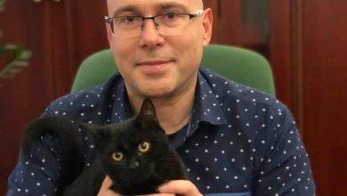 W gabinecie prezydenta Mysłowic zamieszkał... kot