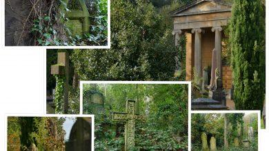 Podróże z Krisem: Nietypowe zwiedzanie, czyli wyjątkowe nekropolie Europy