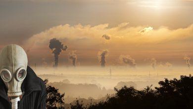 Smogowi liderzy, czyli ranking polskich miast z najbardziej zanieczyszczonym powietrzem [KRAKOWSKI ALARM SMOGOWY] (fot.pixabay.com)
