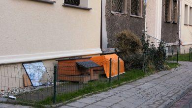 Katowice: Miasto i spółdzielnia mieszkaniowa idą na wojnę o domki dla kotów!