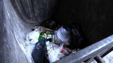 Od stycznia wszyscy musimy segregować śmieci. Kto nie będzie - dostanie karę!