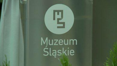 4 tysiące eksponatów, ćwierć miliona gości. Muzeum Śląskie podsumowało 2019 rok