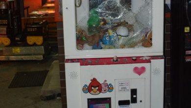 Ukradł maskotki z automatu. Skradzionymi pluszakami chciał obdarować swoją dziewczynę (fot.Policja Podkarpacka)