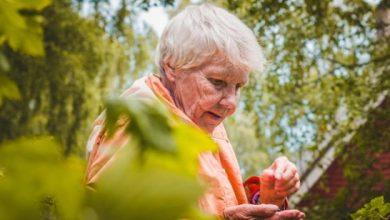 Od 2020 roku trzynasta emerytura gwarantowana! Będzie wypłacana co roku (fot.MRPiPS)