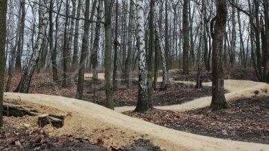 Park Strzelnica (fot. rudaslaska.com.pl)