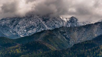 Tragedia pod Giewontem. Odznaczenia dla tych, którzy pomagali w akcji ratunkowej w Tatrach (fot.poglądowe/www.pixabay.com)