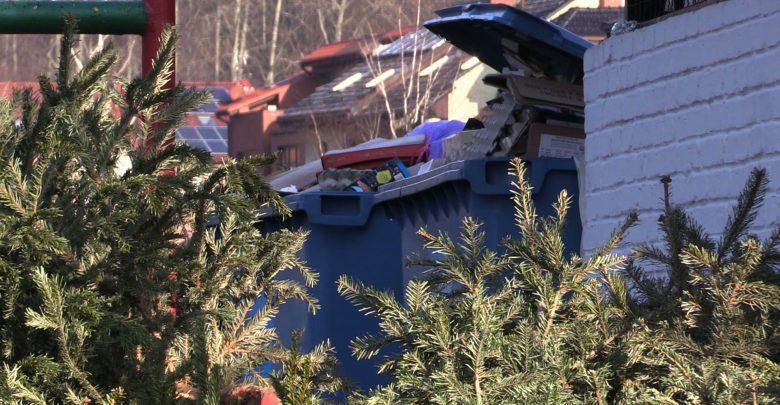 Śląskie: Co zrobić z choinką po świętach? Oddać w czasie specjalnych zbiórek!