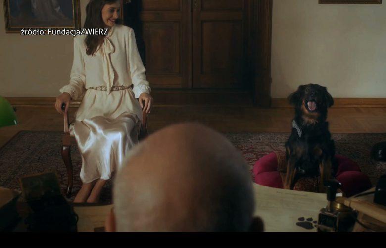 W spocie Zagrali Mirosław Neinert dyrektor teatru Korez i aktorka Joanna Osyda. W klipie debiutował pies Spinner – to jeden z psów oczekujących od lat na adopcję w pszczyńskim ośrodku Arkadia