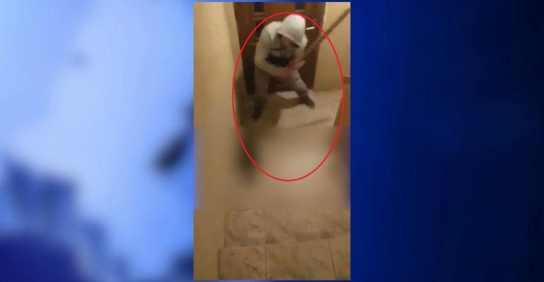 20-latek, który na WIDEO bestialsko katuje kota sam zgłosił się na policję