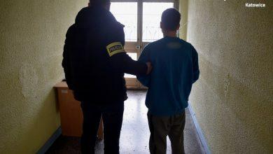 """17-letni """"policjant"""" z Katowic zatrzymany. Mógł wyłudzić od seniorów prawie pół miliona złotych (fot.Śląska Policja)"""