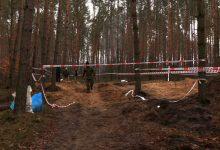 Kalejdoskop Regionów: Sensacyjne odkrycie w Bieruniu! Co odkopano w lesie?
