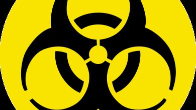 Zabójczy koronawirus 2019-nCoV dotarł z Chin do Europy? Główny Inspektorat Sanitarny wydał KOMUNIKAT! (fot.pixabay.com)
